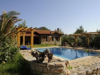 Nice Villa with Internet Access and A/C - Marmaris vacation rentals