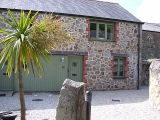 Bright Cottage with Internet Access and Satellite Or Cable TV - Saint Austell vacation rentals
