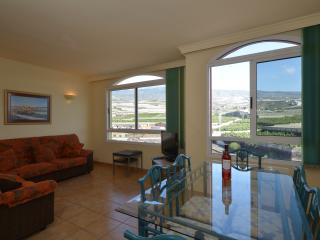 The Views - Playa San Juan vacation rentals