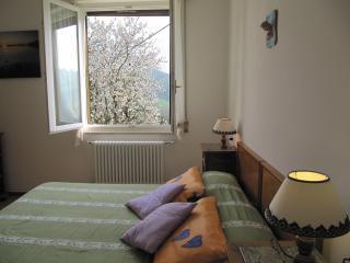 CASABRUNA - STAR Apartment - Salsomaggiore Terme vacation rentals