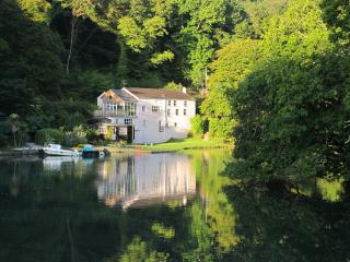 Charming 7 bedroom Golant House with Internet Access - Golant vacation rentals