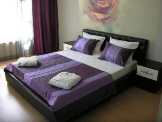 International Apartment Servic - Almaty vacation rentals