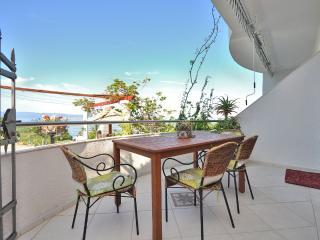 Apartments Jure - 42711-A1 - Jesenice vacation rentals