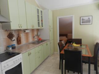 Apartment Vlado - 93301-A1 - Budva vacation rentals