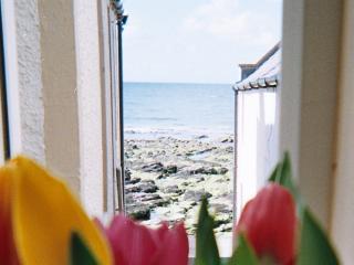 Ellie-Ann Cottage - Gardenstown vacation rentals