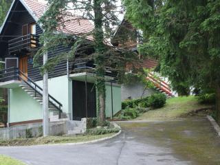 House Bruno + Dental Services - Vrbovsko vacation rentals