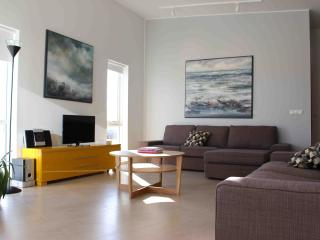 Ecohouse at Eyrarbakki - Eyrarbakki vacation rentals