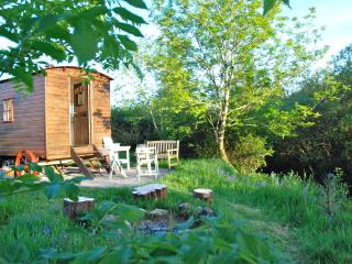 Romantic Shepherds hut with Balcony and Parking - Clunderwen vacation rentals