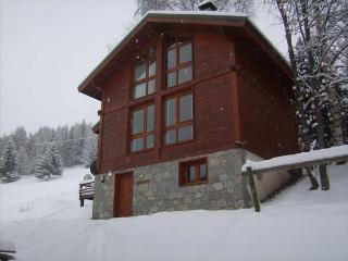 Ski-La Source ChaletEnPiste sleeps 12, Les Coches - Les Coches vacation rentals
