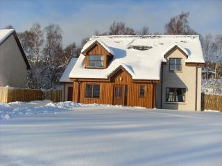 26 Carn Elrig View - Aviemore vacation rentals