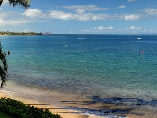 KIHEI BEACH, #306 - Kihei vacation rentals