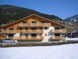Wonderful Condo with Internet Access and Satellite Or Cable TV - La Chapelle-D'Abondance vacation rentals
