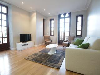 Renovated  furnished 2014+PARKING (optional)+WIFI - San Sebastian - Donostia vacation rentals