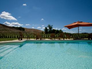 Beautiful farmhouse with pool. - Ghizzano vacation rentals