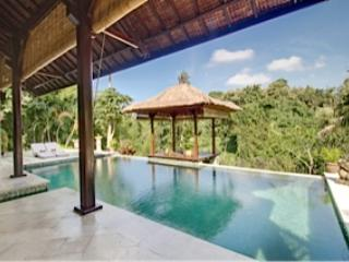overflow pool and gazebo - River View Villa near Ubud & Sanur - Denpasar - rentals