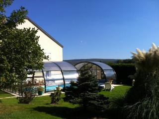 Cozy 2 bedroom Champagne-Ardenne Gite with Internet Access - Champagne-Ardenne vacation rentals