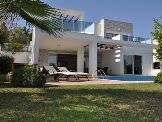 'SpringVilla 10 ' Private villa Sleeps 9 cots ext - Ilica vacation rentals