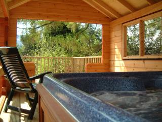 Birchwood Lodge, Loch Tay - Private Hot Tub+Sauna - Fearnan vacation rentals