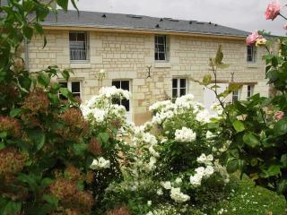 Gîte La Samsonelle - Saumur vacation rentals