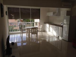 Renovated, Flamboyant Modern Studio - Nettle Bay - Nettle Bay vacation rentals