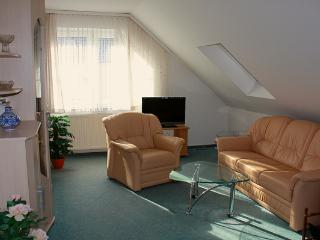 Nice Condo with Internet Access and Bachelor Or Bachelorette Parties Allowed - Grossenhain vacation rentals