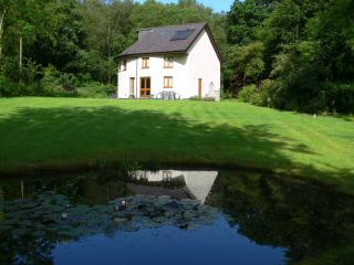 Henllys Lodge - Llandovery vacation rentals