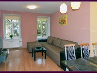 The Very Center of St. Petersburg - 2BR - 100 m2 - Saint Petersburg vacation rentals