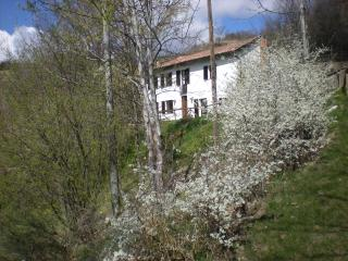 2 bedroom Bed and Breakfast with Internet Access in Canelli - Canelli vacation rentals