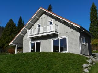 Chalet Myrtille - Gerardmer vacation rentals