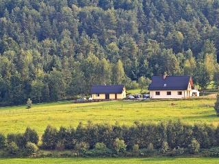 Beautiful Cottage with Internet Access and Stove - Limanowa vacation rentals