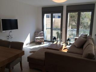 City Center Jerusalem! Brand New Luxury APT!! - Jerusalem vacation rentals