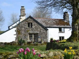 Hatchwell House - Widecombe in the Moor vacation rentals
