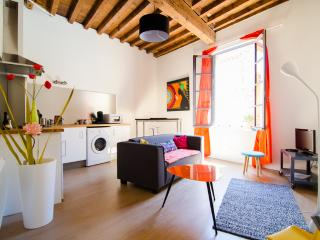 Appartement  plein centre ville ! - Arles vacation rentals