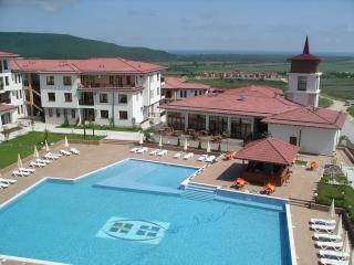 1 bedroom Condo with Internet Access in Rogachevo - Rogachevo vacation rentals