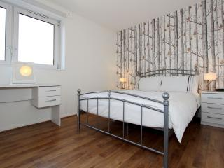 Highly Valued 1BR Apt in Kennington 3 mins to Tube - London vacation rentals