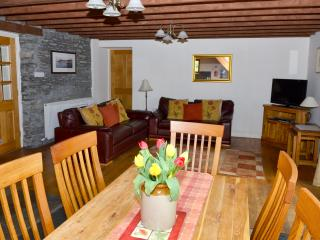 Beautiful Cottage with Internet Access and Central Heating - Pont-Rhyd-y-Groes vacation rentals