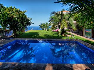 Perfect 4 bedroom Villa in El Sauzal - El Sauzal vacation rentals