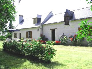 La Maison Tournesol - Gite 10 minutes from Saumur - Saint-Martin-de-la-Place vacation rentals