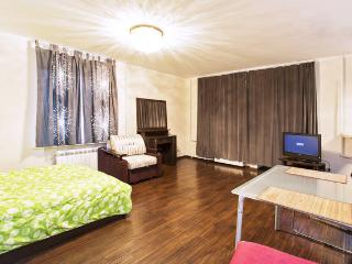 Studio, Marina Grove - Moscow vacation rentals