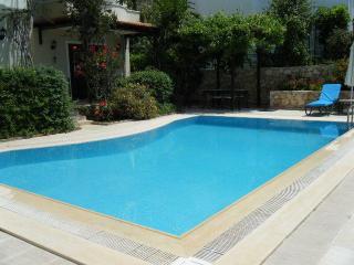 Villa Swallow, spacious with private pool - Kalkan vacation rentals