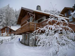 Le Cairn - 12-14p traditional Savoyard Chalet in Ski in/Ski out Bellecote Park - Vallandry vacation rentals