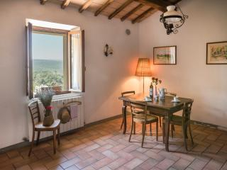 ROSETO 2 - Siena vacation rentals