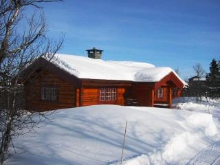 Bright 2 bedroom Cabin in Venabygd with Internet Access - Venabygd vacation rentals