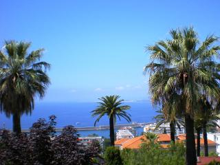 Palm villa - Nice vacation rentals