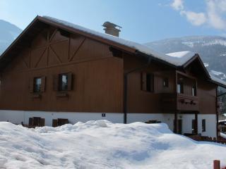 Haus Jayne - Bad Kleinkirchheim vacation rentals