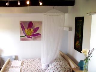 1 bedroom Gite with Internet Access in Rouffignac-Saint-Cernin-de-Reilhac - Rouffignac-Saint-Cernin-de-Reilhac vacation rentals