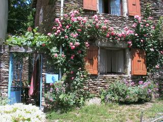 Nice House with Television and Central Heating - Genolhac vacation rentals