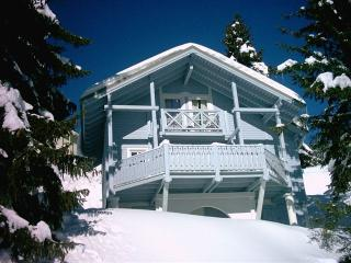Bright 5 bedroom Ski chalet in Flaine - Flaine vacation rentals