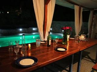 Holiday Villa with private pool - Slatine vacation rentals