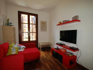Great Flat near Plaza Cataluna - Barcelona vacation rentals